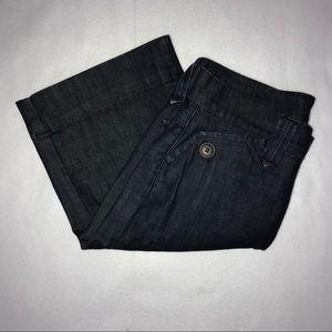 James Jeans Dark Wash Bermuda Shorts 27